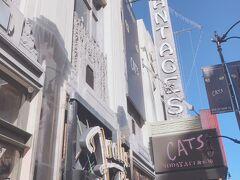 こちらは実際の劇場。入ってはいませんが、この日は日本でもおなじみのキャッツをやっていたみたいですね。