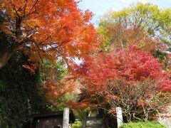 杉本寺へ。このお寺は天平6年(734年)に創建された鎌倉最古の寺といわれている。