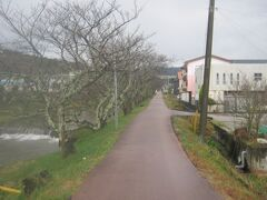 途中から、玉湯川沿いの道を歩いていきます。 ここは桜並木が有名みたいですね。 是非、花の季節に訪問してみたいものです…。
