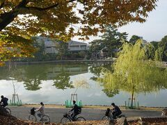 ●猿沢池  いいですね、奈良の朝の風景。 猿沢池の横を通学の自転車。 それぞれの一日が始まります。