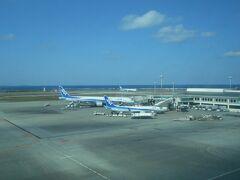沖縄の青い空にはANAのトリトンブルーが合います。B777東京行きですね