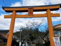 蒲生八幡神社  日向に向かって姶良ICから高速に乗るつもりで先を急いでいたのに、 「日本一の巨樹」と書かれた看板を夫が見つけてしまった。「行ってみたい!」というのでちょっと寄り道。