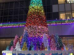 あっという間に名古屋駅! 名駅から電車ではなくイケメンがお迎えに来てくれるって~(╹◡╹)♡ 待っている間にクリスマスツリーをパチリ☆