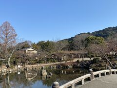円山公園も、エエ感じ・・・・。  全てのお詣りが終了しました・・。只今、11時前!  やっぱ、早朝から活動開始です~(笑)。