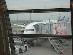 これが本日乗る飛行機。ボーイング787ですね。