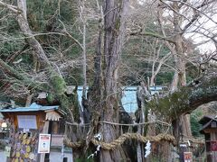 2日なら空いてるだろうとのことで伊那下神社へ  毎年お札もらってるんでここも止められません