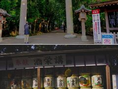 三輪につきました。 ここには、日本最古の神社の一つと言われている大神神社[http://oomiwa.or.jp/]が鎮座しています。 大神神社は大和国一宮であり、お酒の神様でもあります。お酒の神様となると無視するわけにはいきません。 大神神社へ向かう参道は思っていた以上に綺麗に整備されています。参拝客も結構います。ただ、列車の乗客に対して人が多いところを見ると車で来る人の方が多いようです。(バスは休日だけしか運行していないようですし。) お酒の神様なのでもう少し公共交通機関利用者が多いかと思ったのですが、お酒を飲むわけではないのでそんなものですかね。