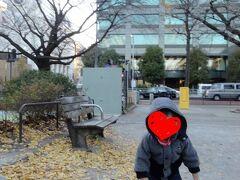 皇居側に渡って、千鳥ケ淵公園に来て見ました。「子どもの池」エリアはその名の通り、子ども向け遊具もあるので、我が子も楽しそう。