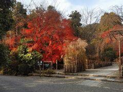食事が終わると一路京都市内に向かって車を走らせます。12月ということで紅葉の時期は過ぎていると思っていましたが、ウェザーニュースの「龍安寺は見頃」という情報を頼りにやってきました。情報通り、入口の紅葉が鮮やかです。