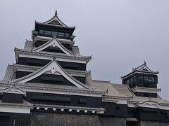 4月には入城できるようです。 漆喰補修が終わり、桔梗紋の瓦が見えますか。