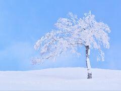 ほんの一瞬、 青空がのぞいた以外は 曇天で、何よりとっても寒いので 早々に山頂を後にします。