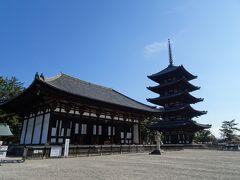 歩いてまずは興福寺。  人いなすぎ…。