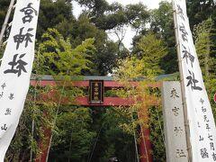 ホテルに向かう前に少し熱海観光をしました。 まずは来宮神社へ。