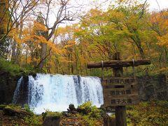 階段を下りて奥入瀬渓流の中でも有名な銚子大滝を見ました