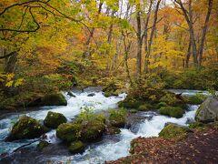 奥入瀬渓流は川の流れも見どころの1つです