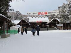 北海道神宮の経路に入って、初詣も兼ねます。おみくじ引いて、シマエナガちゃんと会えますようにとお願いします。
