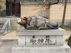 いい牛。 ここも、湯島も善光寺もいいね。牛