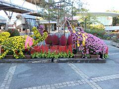 鳥取県立フラワーパーク とっとり花回廊