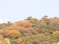 今回は登りませんが、松山城。 現地の同期が言ってましたが、松山の人々は松山城をとてもリスペクトしているので、市内には松山城よりも高い建物をあえて作らないのだとか。  なんたる地元愛。 良いですよね、こういうの。