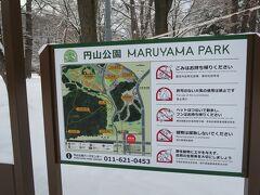 動物園の第一駐車場に止めて、公園正面まで北海道神宮を抜けて歩いて行くコースをとります。円山公園はとても大きい公園で、隣地が円山という自然の山、これならシマエナガちゃんにも会えるかも?