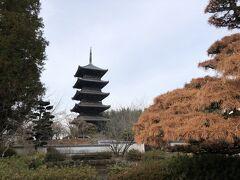 ■2日目 1月11日(月) 朝食後、国民宿舎の近くにある「備中国分寺跡」を散歩します。