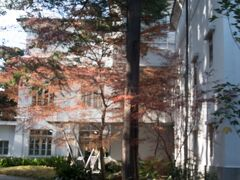 旧熊本藩主細川家伝来の美術品、歴史資料や、16代当主細川護立の蒐集品などを収蔵し、展示、研究を行っている永青文庫がある。細川家十八代当主 細川護煕氏が理事長。 ちょっと中を覗いてみようかなと思ったけれど、入館料が1000円と高額だったので、室町~江戸の歴史など、もっと事前学習してからくることにして外観のみを見学。