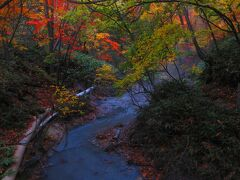 大湯沼川天然足湯と紅葉