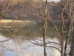 風景のなかの「奈良」 荒池  すっかり冬の佇まいです。
