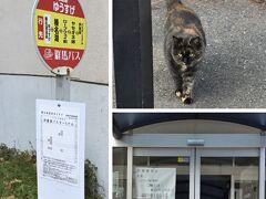 舗装道を隔てて向かいにある別館「レークサイドゆうすげ」に行きました。人懐っこい猫が出迎えてくれたものの、なんと令和2年3月末に閉館!名物の「榛名湖展望風呂」がなくなってしまいました。