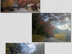 紅葉の時期だったので、耶馬溪をドライブ。