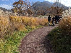 時間は13時半で予定を2時間以上も押しているから、さらりと雄大な景色をみせて福岡に戻るつもりだったのだけれど、 息子ズが「歩きたい」とのことで、「タデ原湿原」の遊歩道を探索。