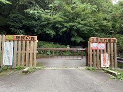 下りは、大阪府が管理している公園「なるかわ園地」を抜けていきます。大阪府内はあまり緑が多くないように感じますが、意外と大阪府が管理している公園や緑地は多いです。東京は街中に点在しているけど、大阪は公園に集中しているイメージがあります。