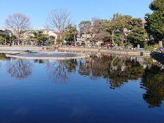 碑文谷八幡に初詣に行く途中まず清水池公園へ。 この日も池で釣りをする方がちらほら。