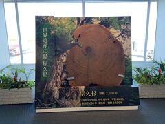 鹿児島空港に到着いたしました。