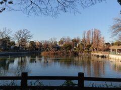 コロナ禍の自粛で出歩くことが極端に少なくなったので足腰の衰えを痛感しました。 そこで天気の良い日は出来るだけ散歩をするようにしたいと思いました。 碑文谷公園へ。