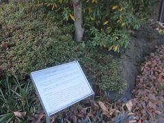 この場所には米沢藩上杉家の江戸藩邸があったようです