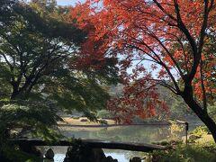 渡月橋の紅葉です。