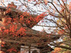 今回寺社はどこも待つことなくスムーズに入られ、助かりました!(^^)! 4日前に同僚がツアーの特別早朝拝観で「東福寺」を参拝し、終わって外へ出たところ、通常拝観待ちの行列だったそうです。