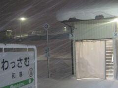 いやー、酷い雪ですな~。  てか、この状態では、ここから家までカエルのも難儀でござるな…(;´Д`)。