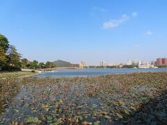 五里亭から見る風景
