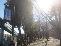 蘆花恒春園(芦花公園)に到着です  降りた駅は「芦花公園」駅ですが、公園までは駅から歩いて20分ほどかかりました 「芦花公園」駅という割には公園まで結構距離があります