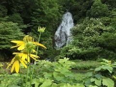 【道の駅こさか七滝】15:10 小坂鉱山事務所出ると数分で道の駅こさか七滝に着きます。 その名の通り滝があります。 滝の近くに行くと一気に温度が下がり、涼しさを感じることができました。