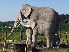 ゴール~~~ 双子公園(印西市) ナウマンゾウの像…もうちょっと展示の仕方があったんじゃないか?(^^;;