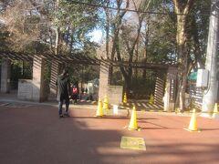 「井の頭公園」駅というだけあって、駅前が井の頭公園の入口になっています