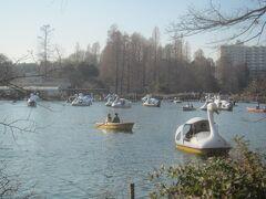 それ以上に、池でボート乗ってる人たち多いような・・・  ボートの上狭いのにぃ、、、しかも向かい合って