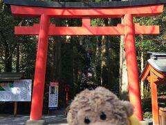 ホテルからタクシーで箱根神社にやって来ました。 これから参道を登って本殿に向かいます。