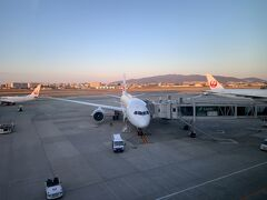 今回の旅行では、まず甲府へと向かうのですが、諸般の事情により、最初は飛行機で、伊丹ー羽田へと移動します。 伊丹空港にて。今回搭乗する飛行機です。