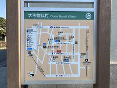 美術館の近くには大宮盆栽村があります。