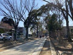 氷川参道を大宮駅方面に歩きます。