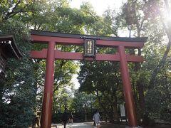 先ずやって来たのは根津神社。